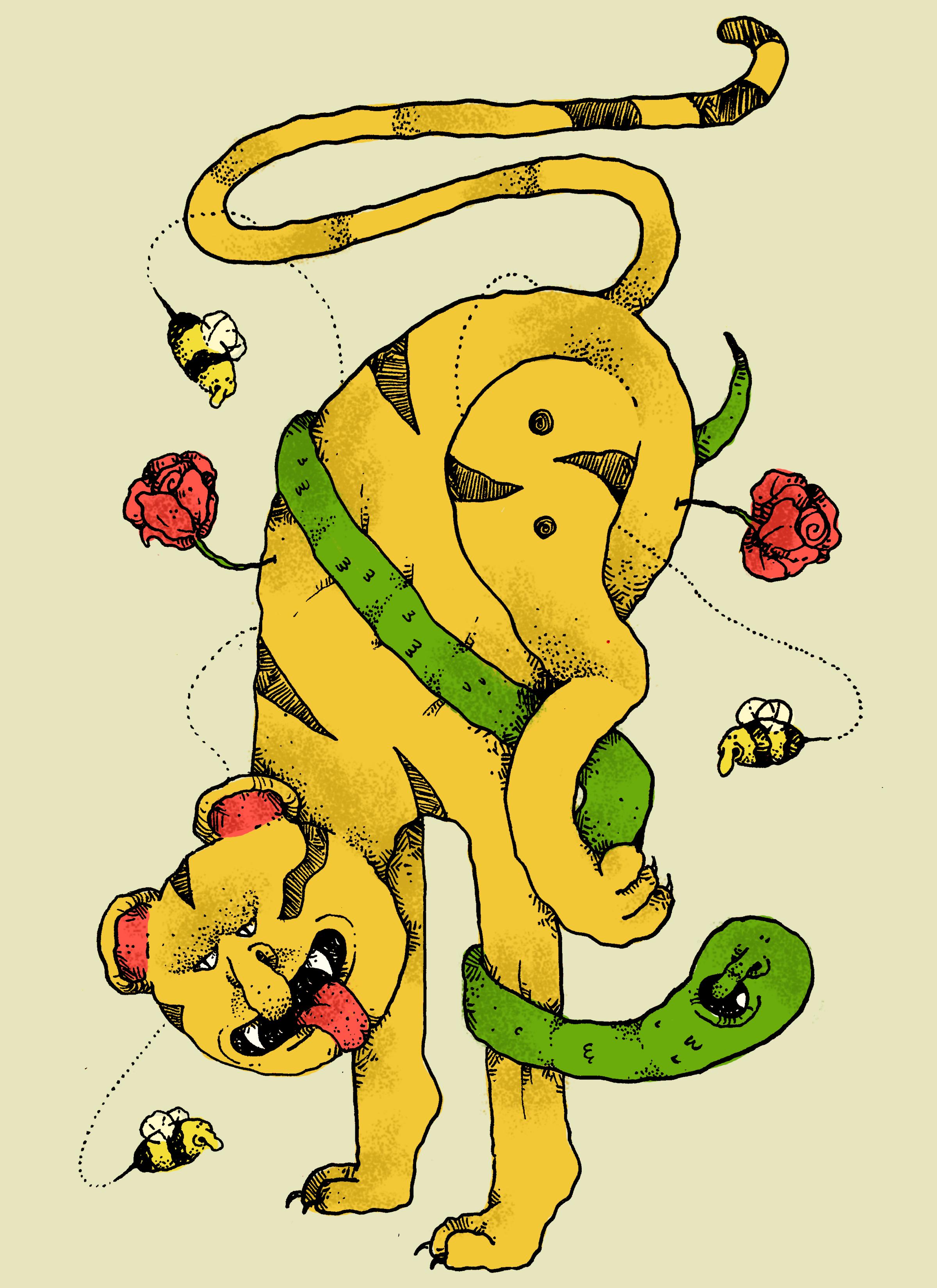 lion2c.jpg