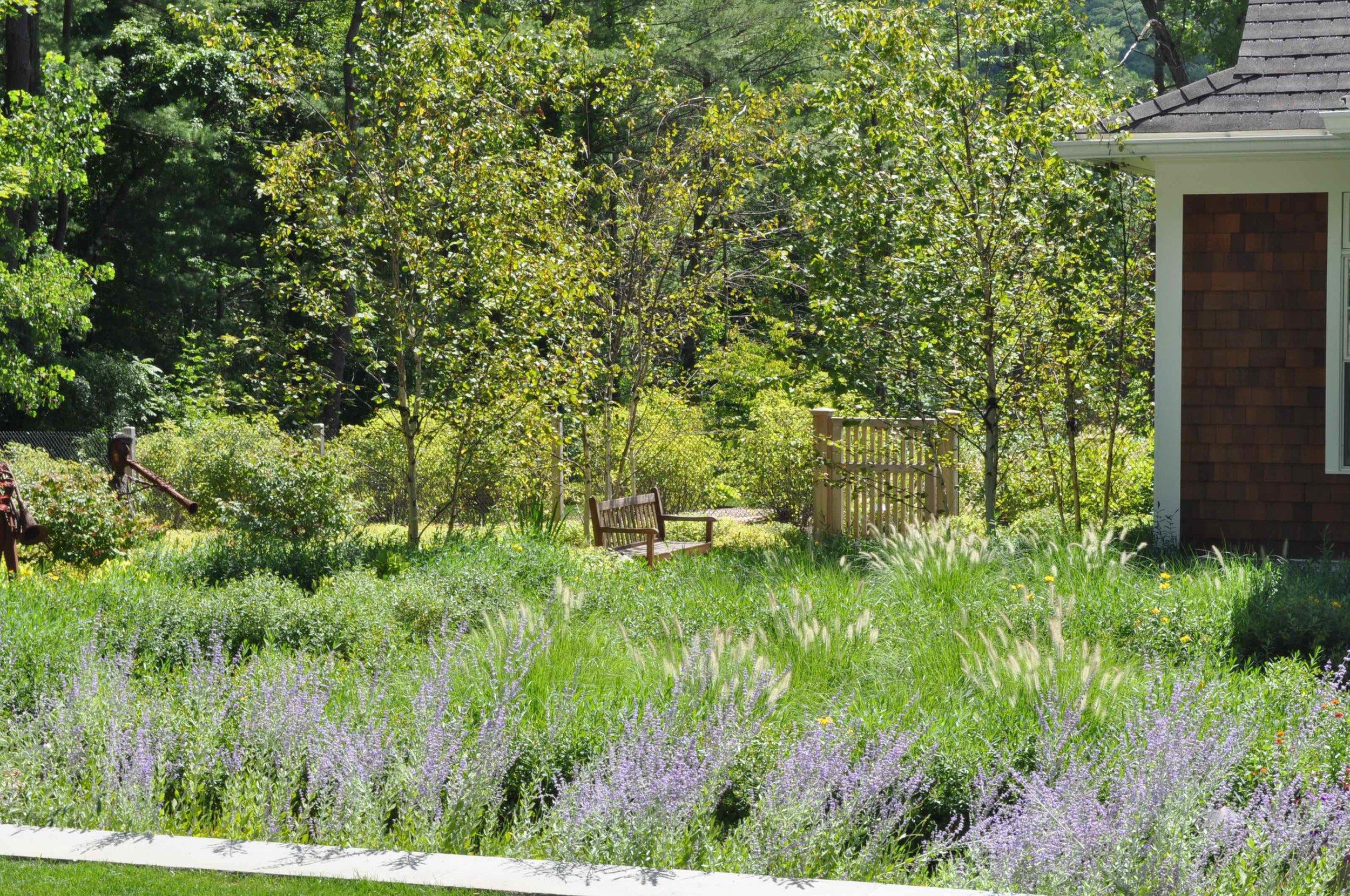 Berkshires (10)small.jpg