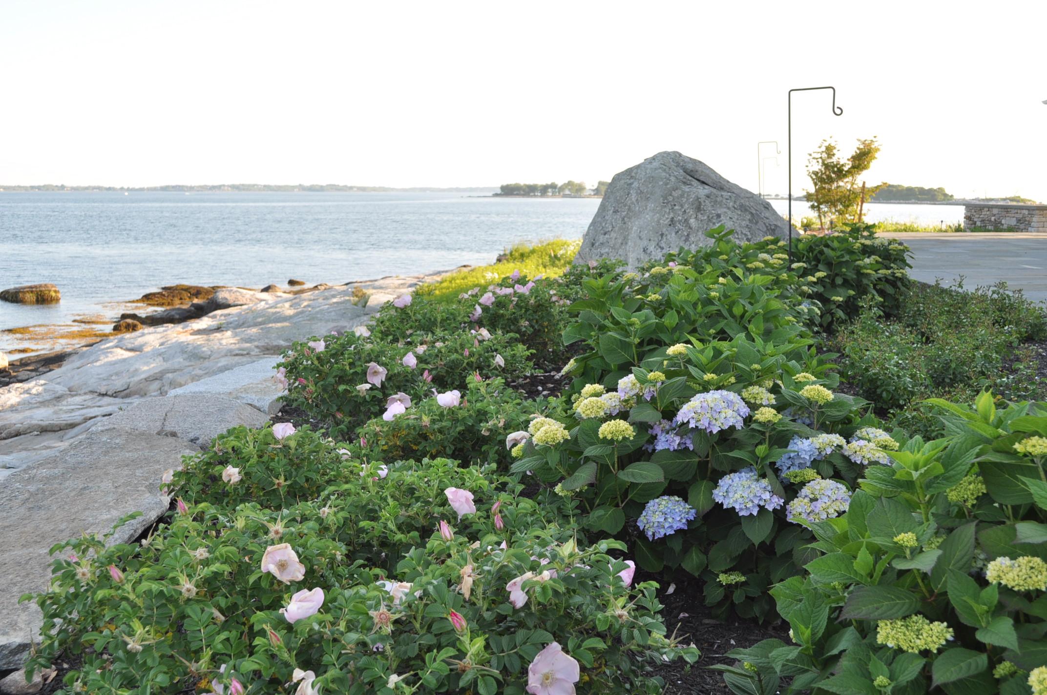 Masons Island (7).JPG