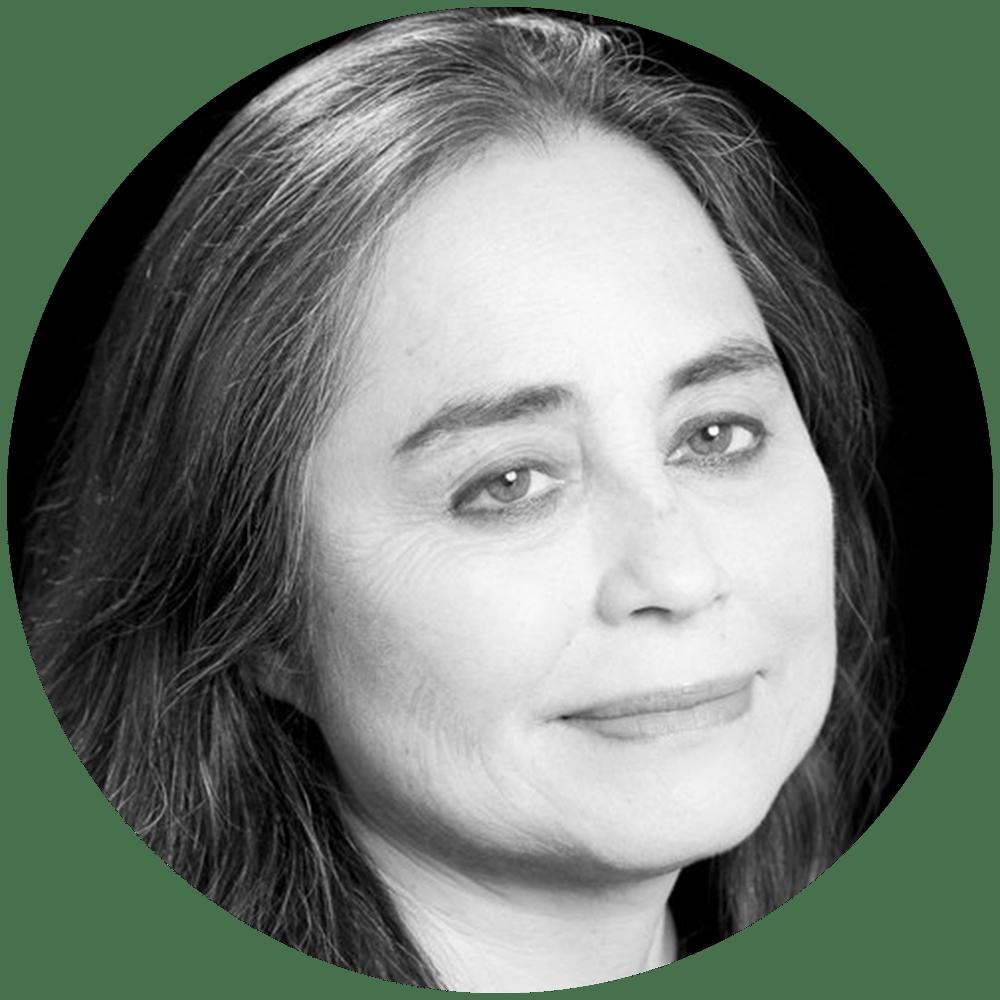 Anezka Sebek Thesis Professor I