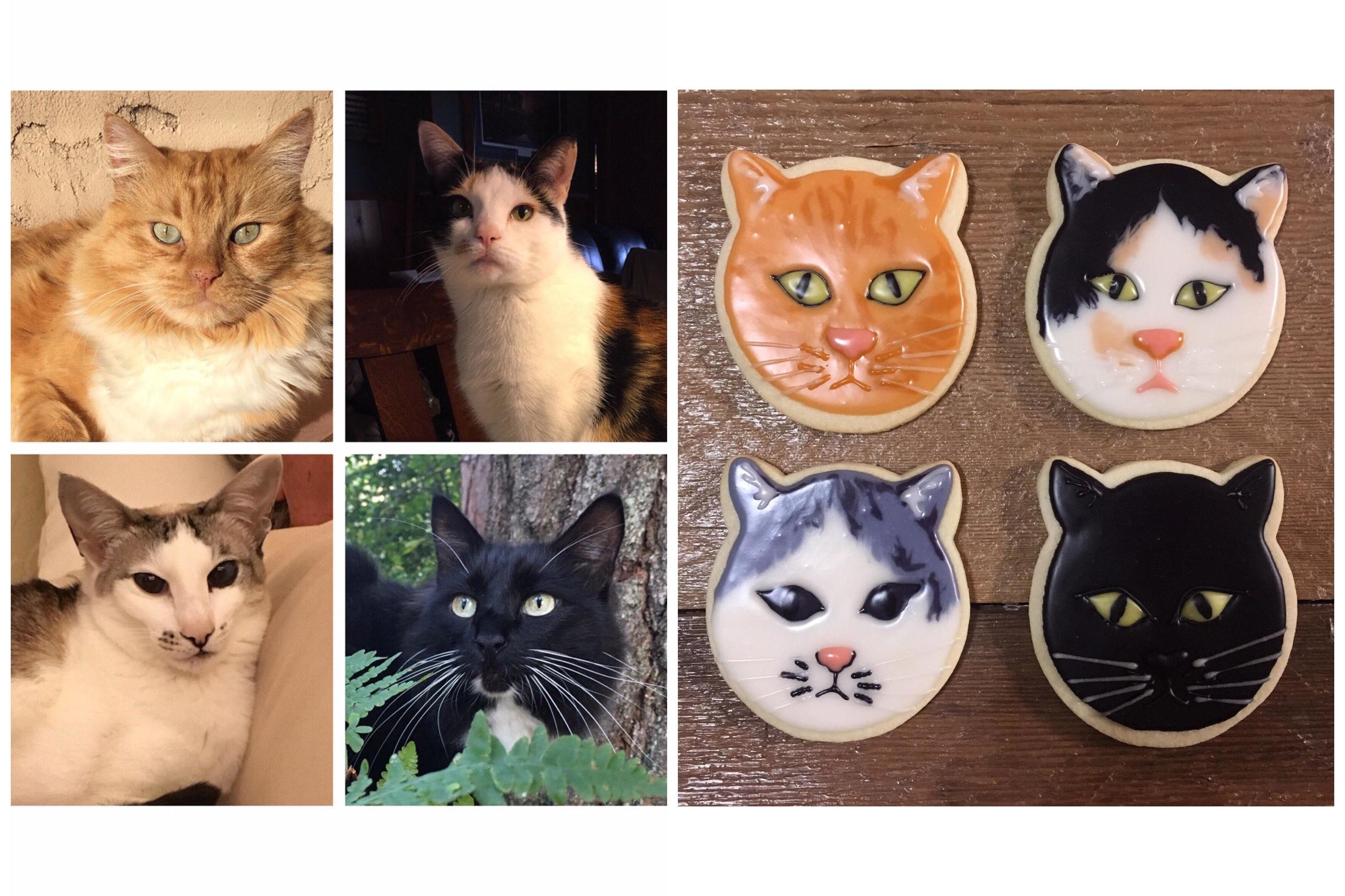 cat+cookies.jpg