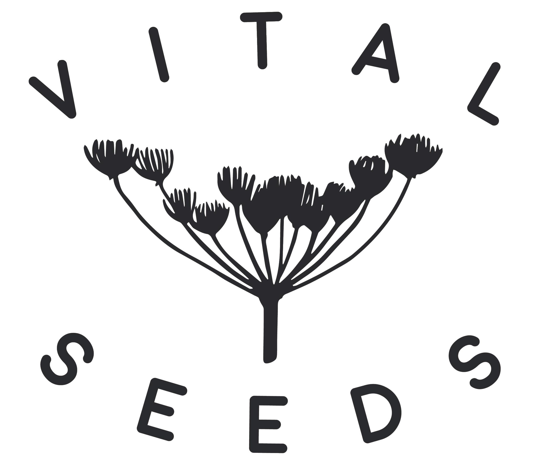 VS_Logo_6.jpg