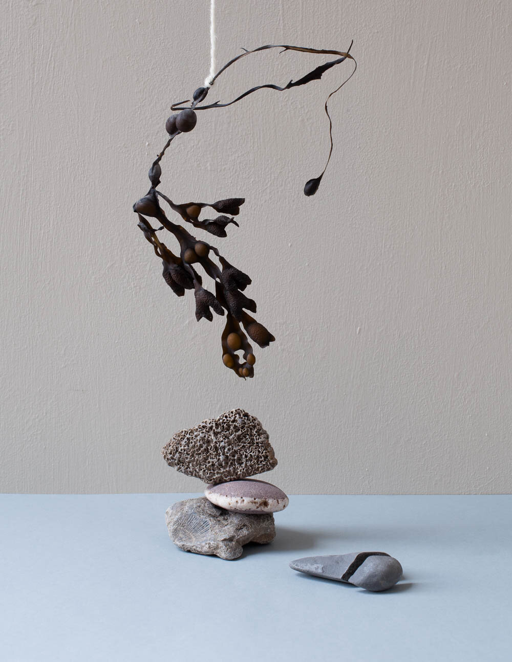 Photograph of a hanging seaweed and pebbles sculpture