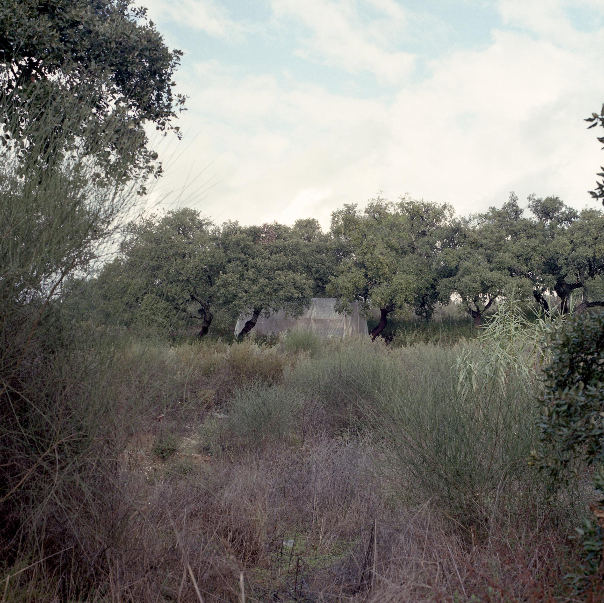 Settlement near Lucena del Puerto(HU), 2017