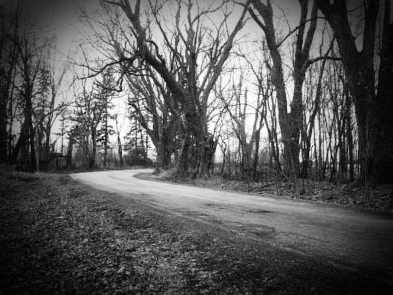Witch-Road-Ripon.jpg