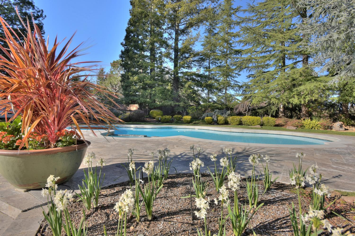 15977 Grandview Dr Monte-large-053-53-Pool and Flowers-1500x1000-72dpi.jpg
