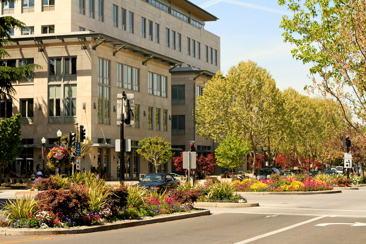 Downtown Mountain View-2-X2.jpg