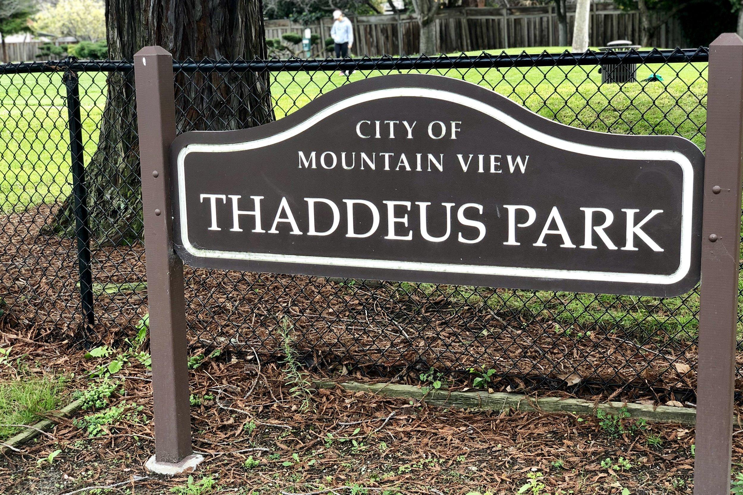 Thaddeus Park Mountain View.jpg