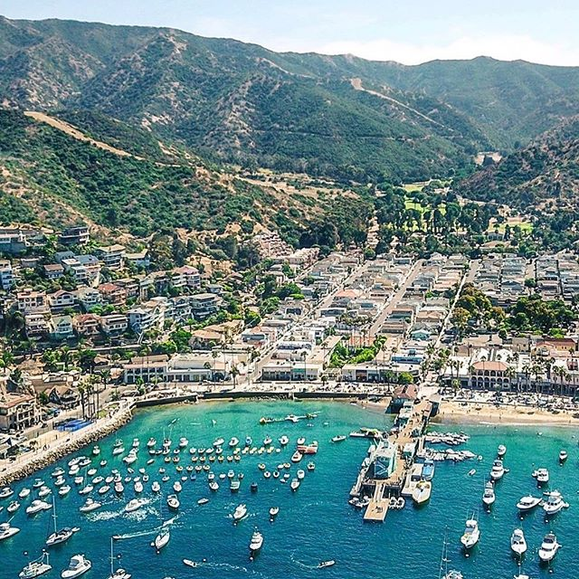 Catalina Island is part of Los Angeles County, and Avalon, incorporated in 1913, was the 13th city in the county. There are at least 107 cities in Los Angeles county today. 🤓 ⠀⠀⠀⠀⠀⠀⠀⠀⠀⠀⠀⠀⠀⠀⠀⠀⠀⠀⠀⠀⠀⠀⠀⠀⠀⠀⠀⠀⠀⠀⠀⠀⠀⠀⠀⠀⠀⠀⠀⠀⠀⠀⠀⠀⠀⠀⠀⠀⠀⠀⠀⠀⠀⠀⠀⠀⠀⠀⠀⠀ 📷: @captain_kris ⠀⠀⠀⠀⠀⠀⠀⠀⠀⠀⠀⠀⠀⠀⠀⠀⠀⠀⠀⠀⠀⠀⠀⠀⠀⠀⠀⠀⠀⠀⠀⠀⠀⠀⠀⠀⠀⠀⠀⠀⠀⠀⠀⠀⠀⠀⠀⠀⠀⠀⠀⠀⠀⠀⠀⠀⠀⠀⠀⠀⠀⠀⠀⠀⠀⠀⠀⠀⠀ #spectrumsports #runcatalina #catalinaisland #vacationraces #desinationevents #trailrunning #instarunner #runtoinspire #runhappy #runningmotivation #scenicviews #ruggedtrails #trailrunner #funfact
