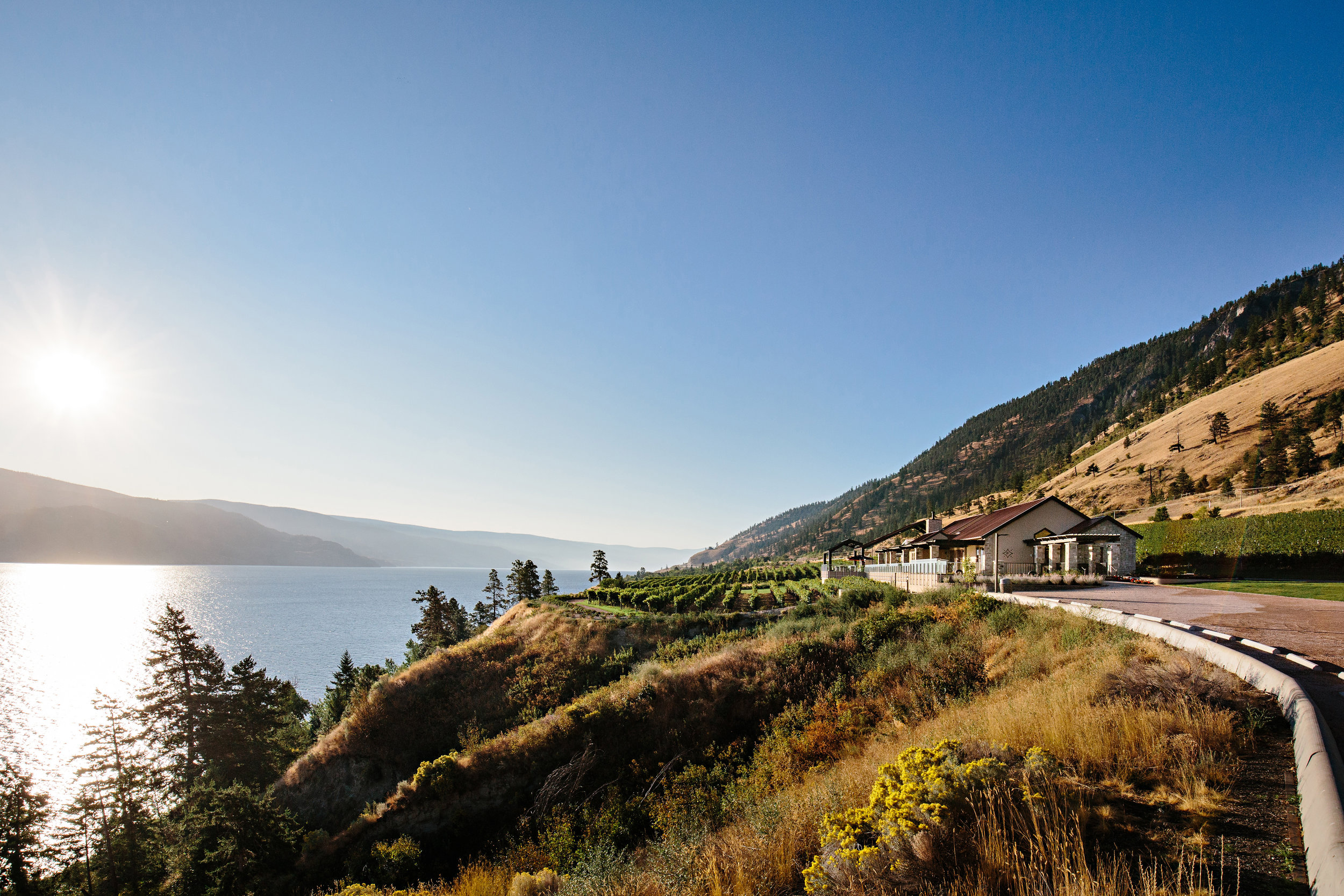 Fitzpatrick Family Vineyards, Peachland