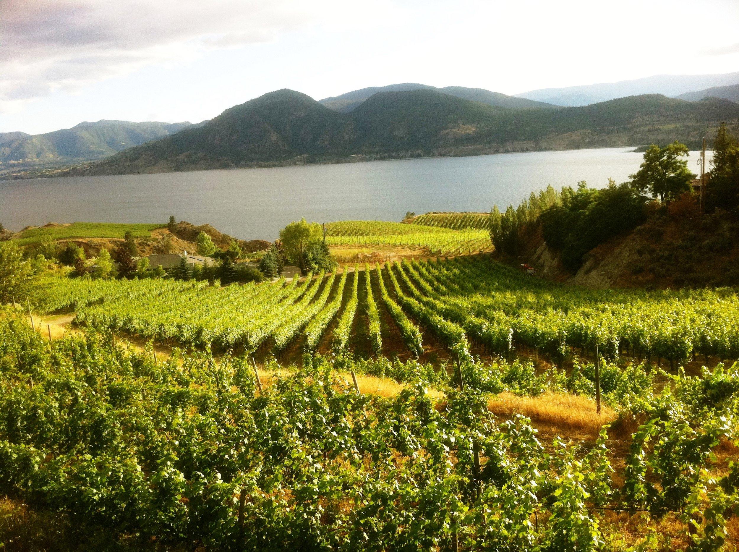 Naramata Bench Wineries Association