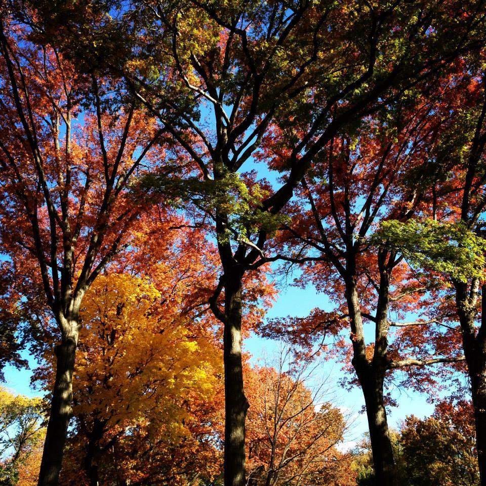 september autumn fall