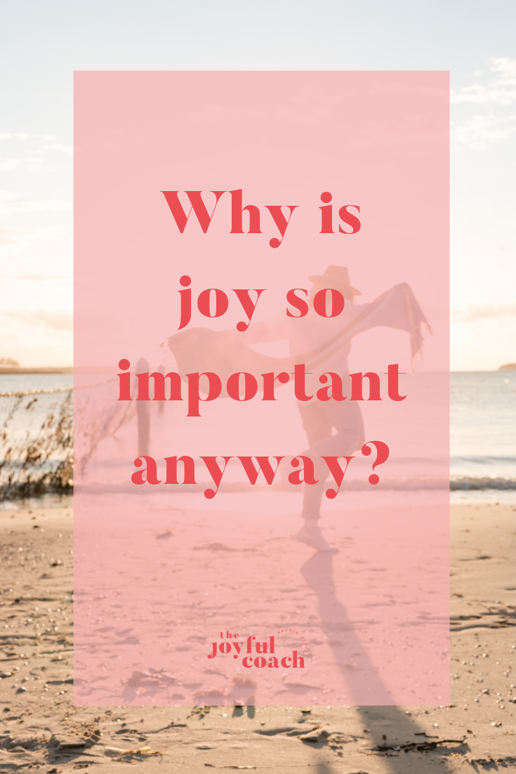 Why is joy so important anyway_.png