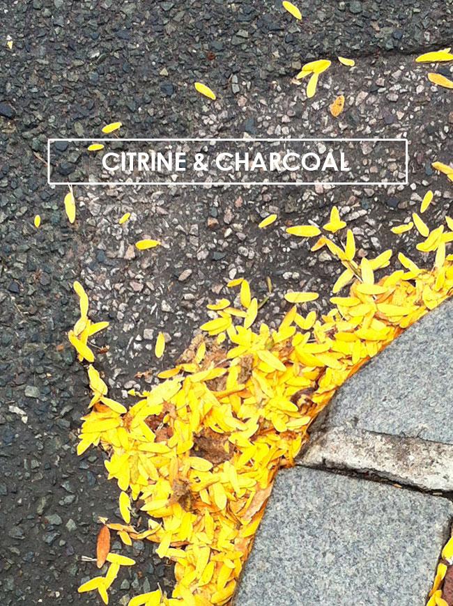 citrine-charcoal.jpg