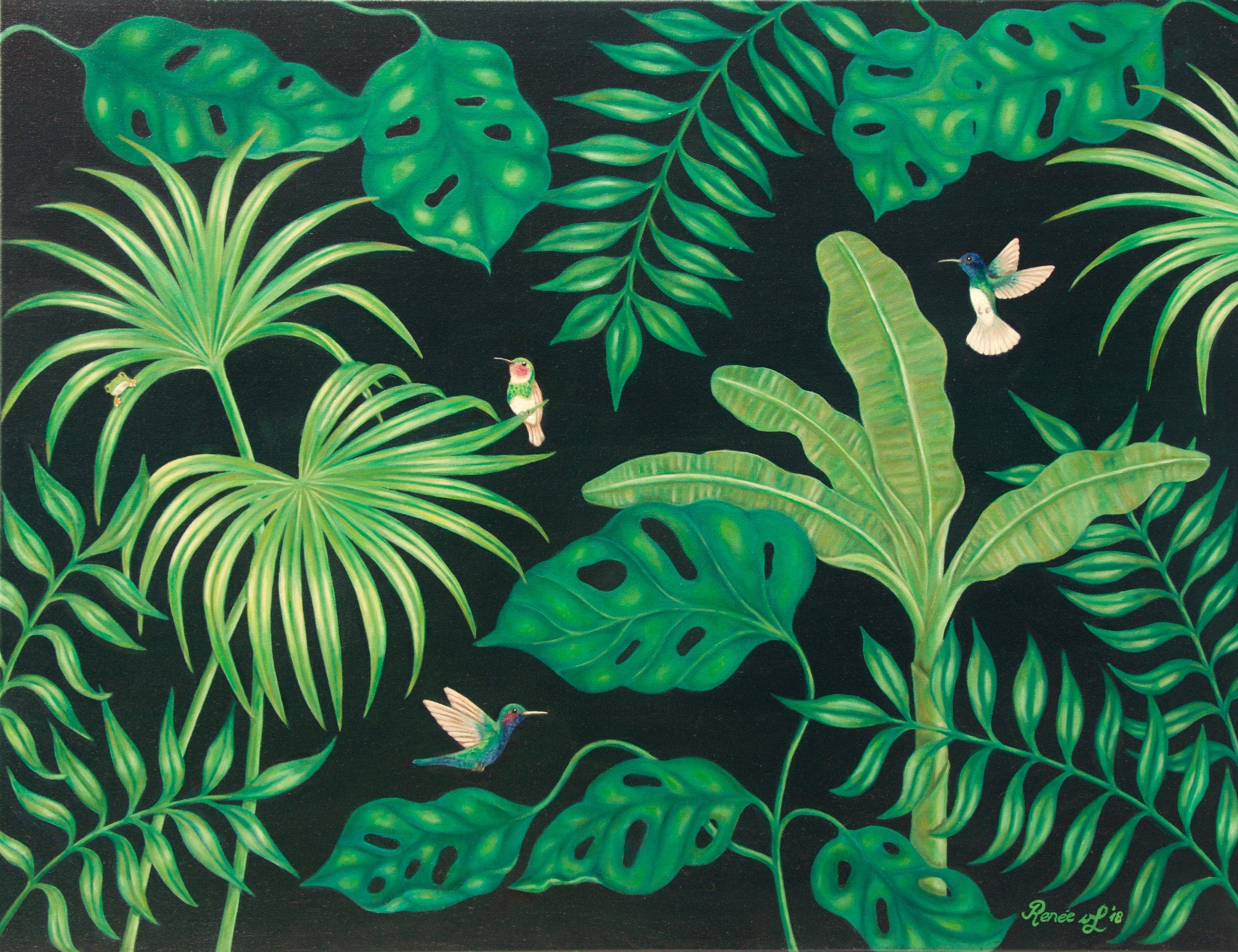 Jungle-Hummingbrid-Frog.jpg
