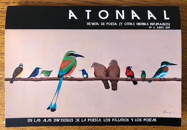Delighted that Spanish poetry magazine Atonaal used my 'Conference of the Birds' painting on the cover if its latest edition, dedicated to birds in poetry. Since the title of my painting is based on a poem by a Sufi poet of the 12th century it seems like a perfect match😀