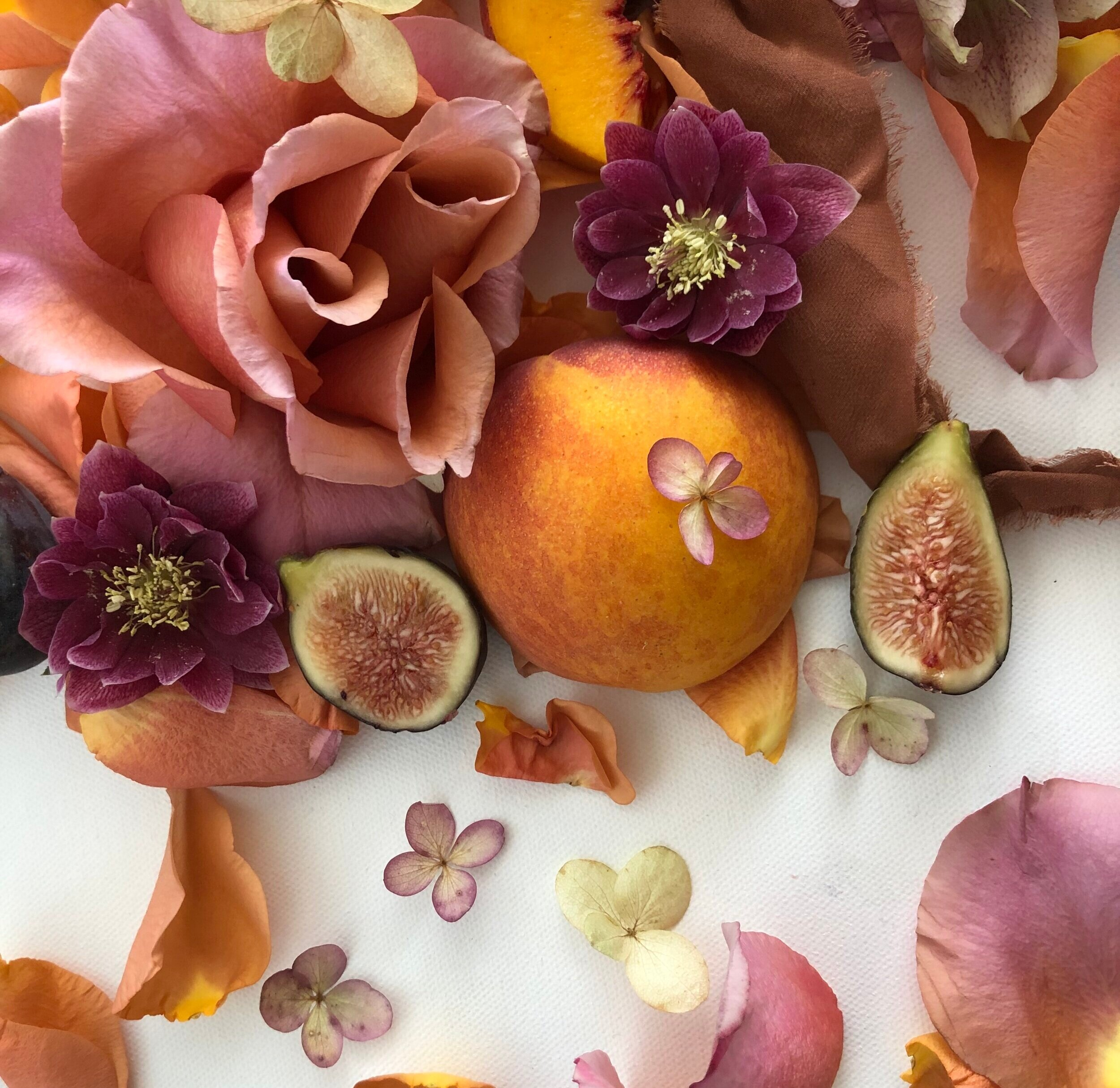 printed by everbloom - a collection of photographed florals
