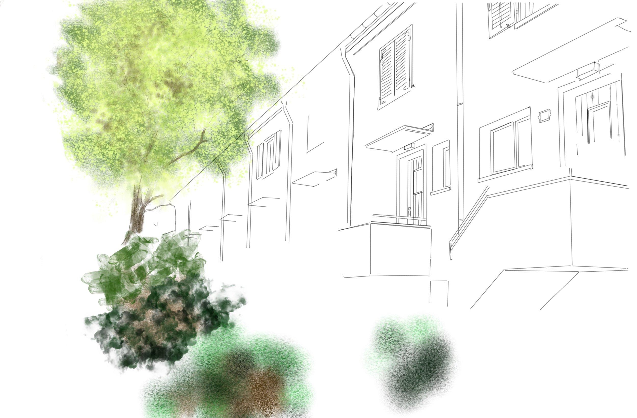 Illustration Grossalbis