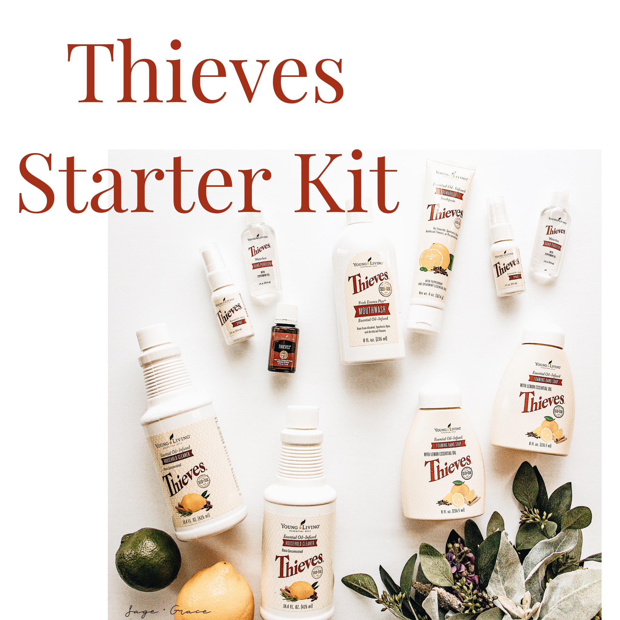 Thieves Starter Kit - Sage and Grace