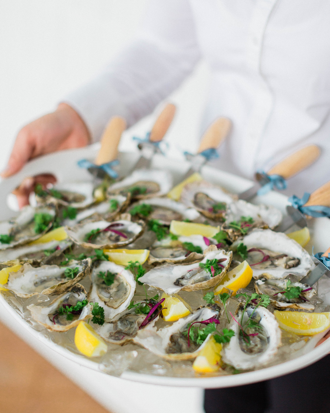 NC Oysters