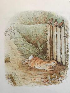 peter-rabbit2-225x300.jpg