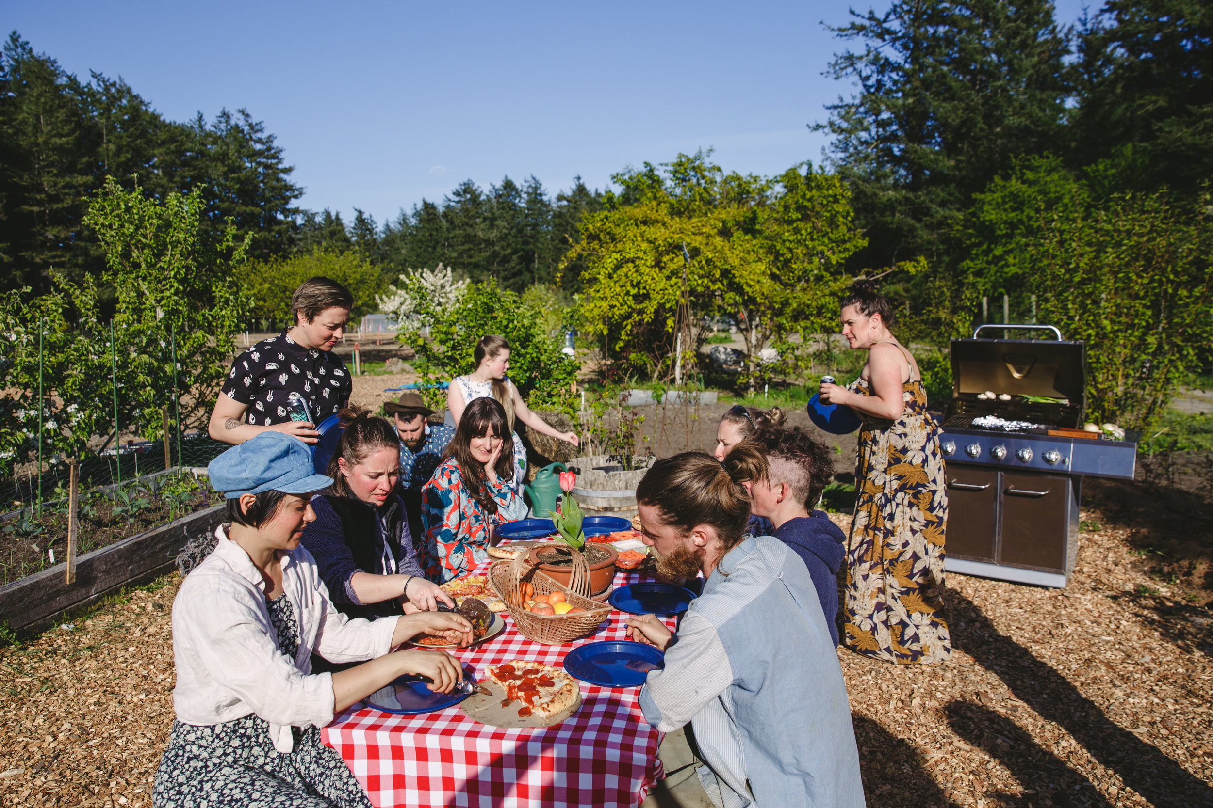 Connect - The farm is part of our desire to build community. Gardening is calming, it brings people outdoors, it teaches them where food comes from, and it allows them to make healthy connections with one another and with the land and garden.