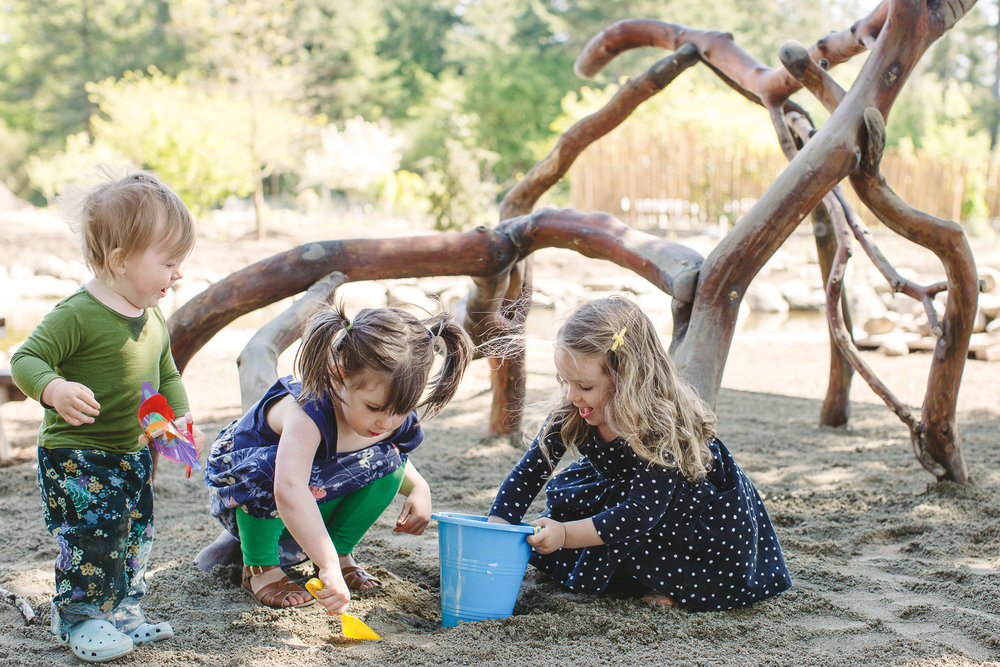 Visit our natural playground made from Madrona Trees.