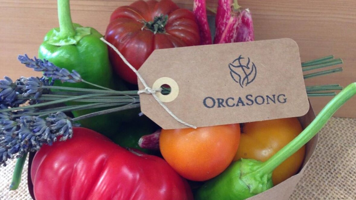 Planting A Rainbow Orcasong Garden Weekly Products Orcasong