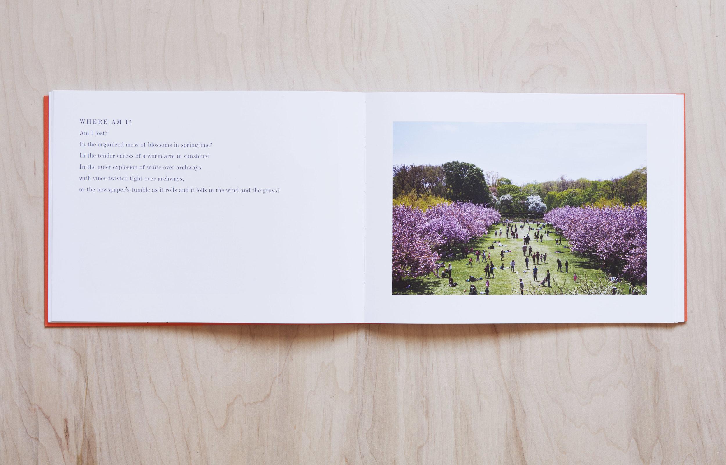 2019_03_04_bookproject_0245_v2.jpg