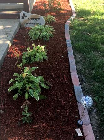 Flower Bed Maintenance - Cobden, IL