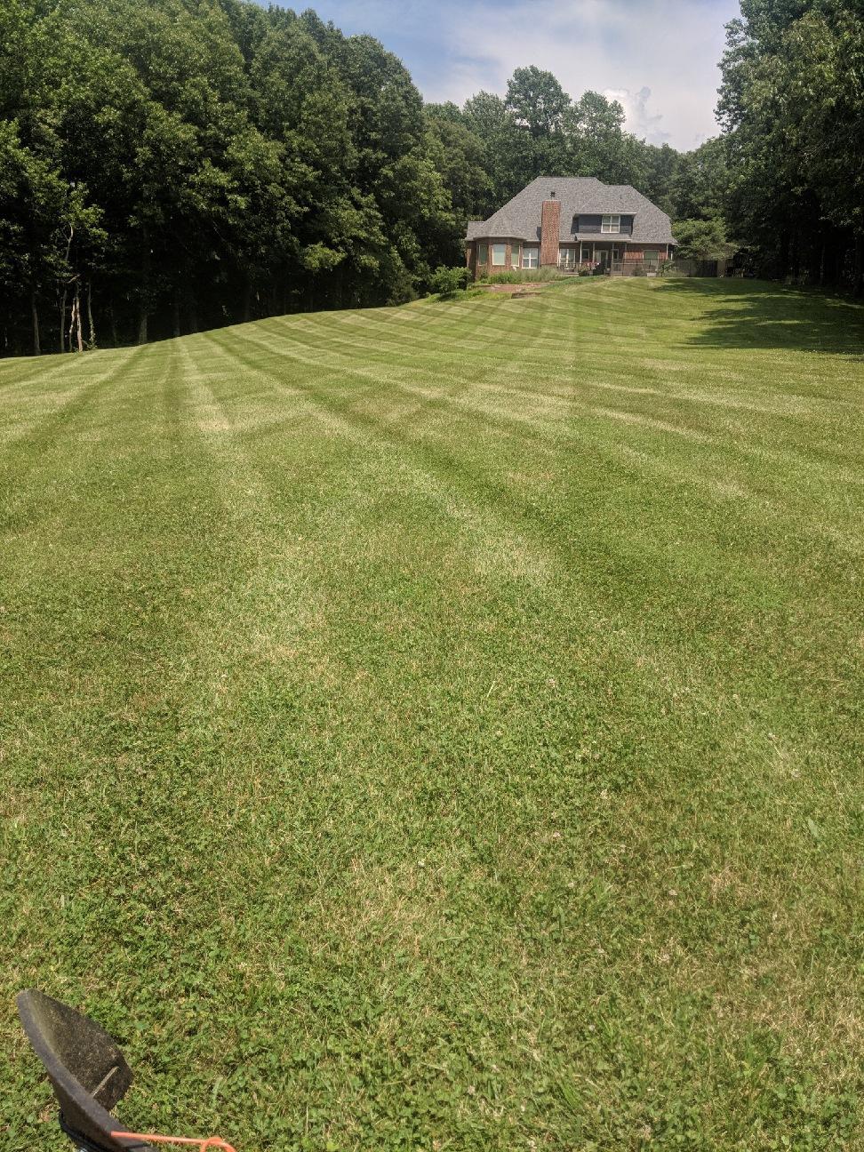 Grass Cutting - Cobden, IL