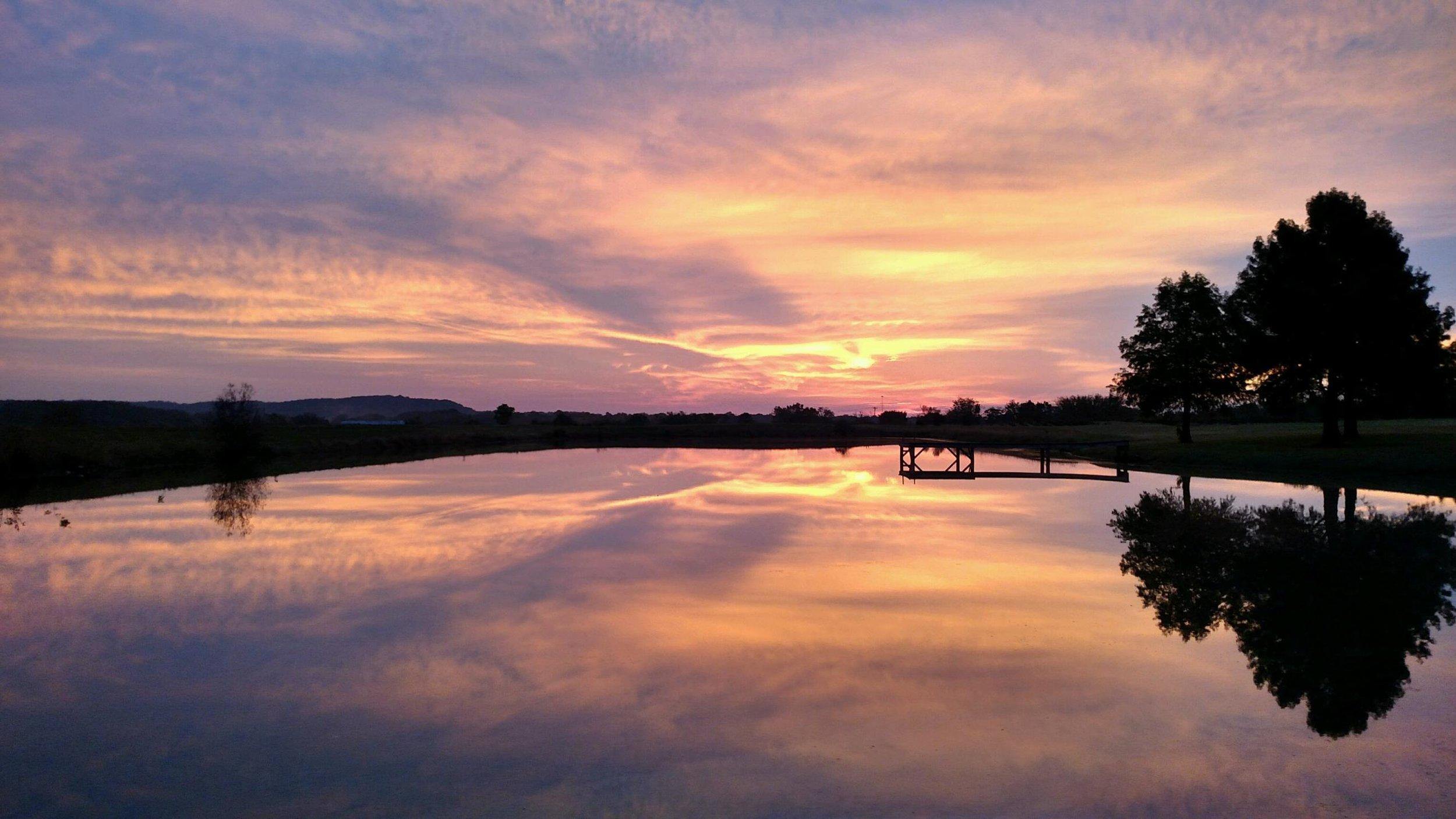 Stress Free Lawn Photo - Cobden, IL