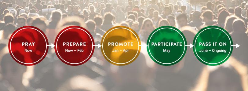 Steps-and-strategies-banner.jpg