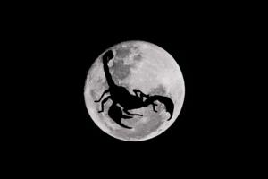 scorpio moon.png