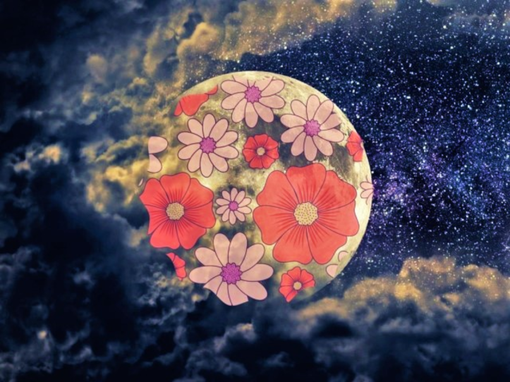 Flower Moon.png