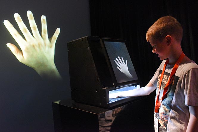 Augmented Hand Series - Augmented Hand Series is real-time interactive software system that presents playful, dreamlike, and uncanny transformations of its visitors' hands