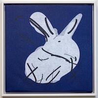 Rabbit . Image courtesy of Tom White.