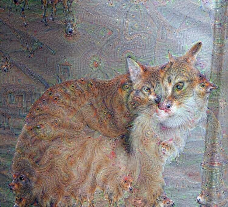 Father Cat - One of the first images ever enhanced with Google DeepDream.