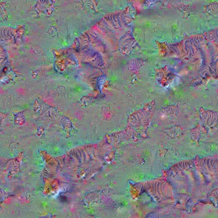 Cats - One of the first images ever enhanced with Google DeepDream.
