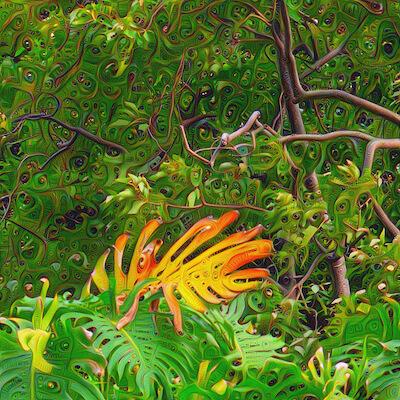 The Needle - Maui, HI