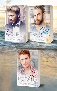 Top Shelf contemporary gay romance novel from Allison Temple.
