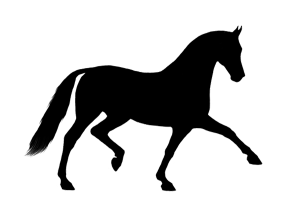 Horse Mortality & Additional Coverages -