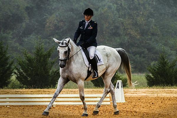 HorseRojasEquine_0005_horse-573770_1920.jpg