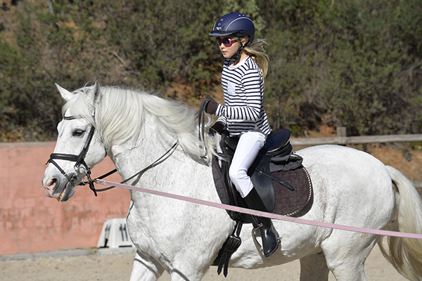 HorseRojasEquine_0001_sport-3363716_1920.jpg