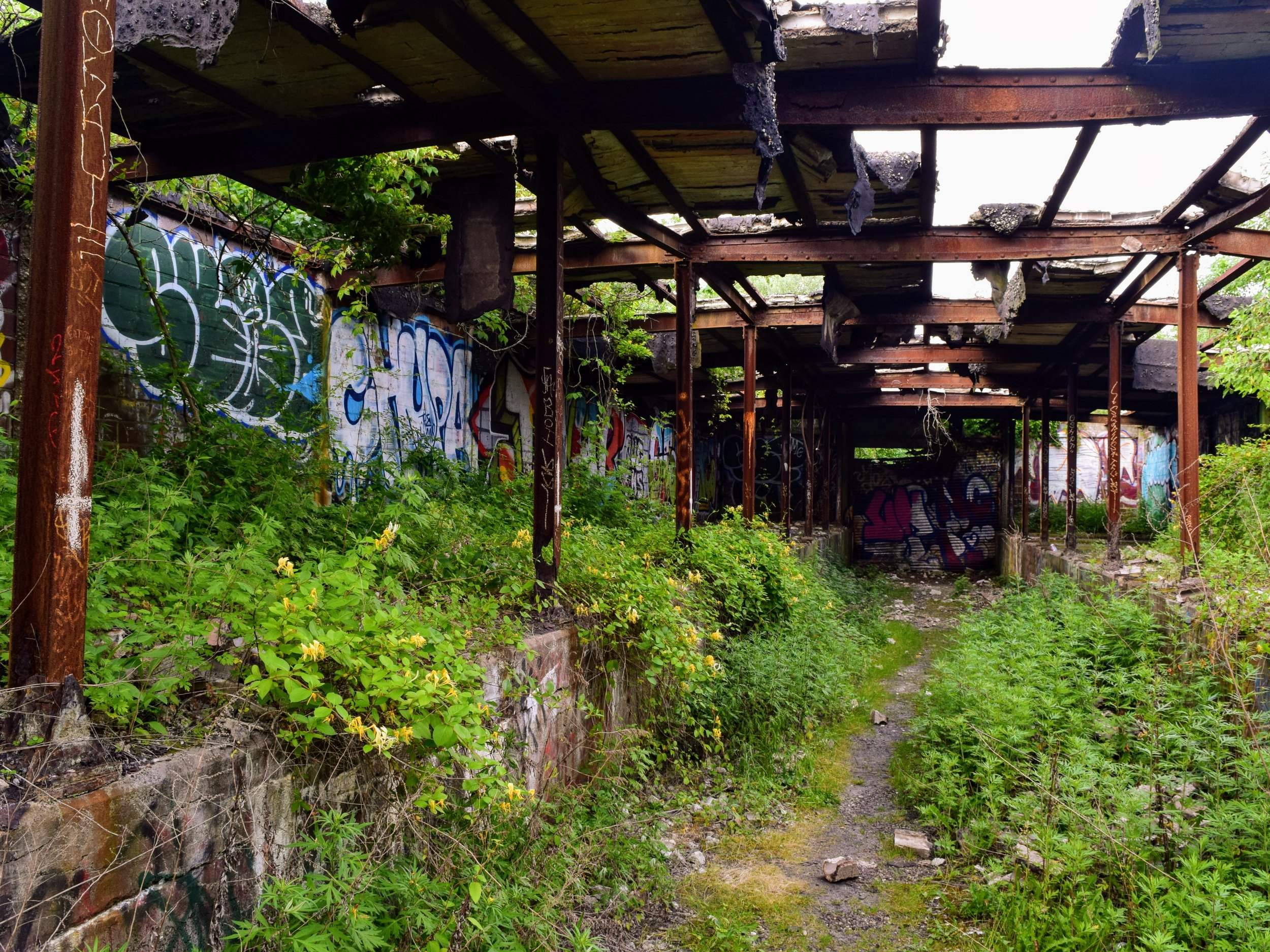 Abandoned building with graffiti and weeds