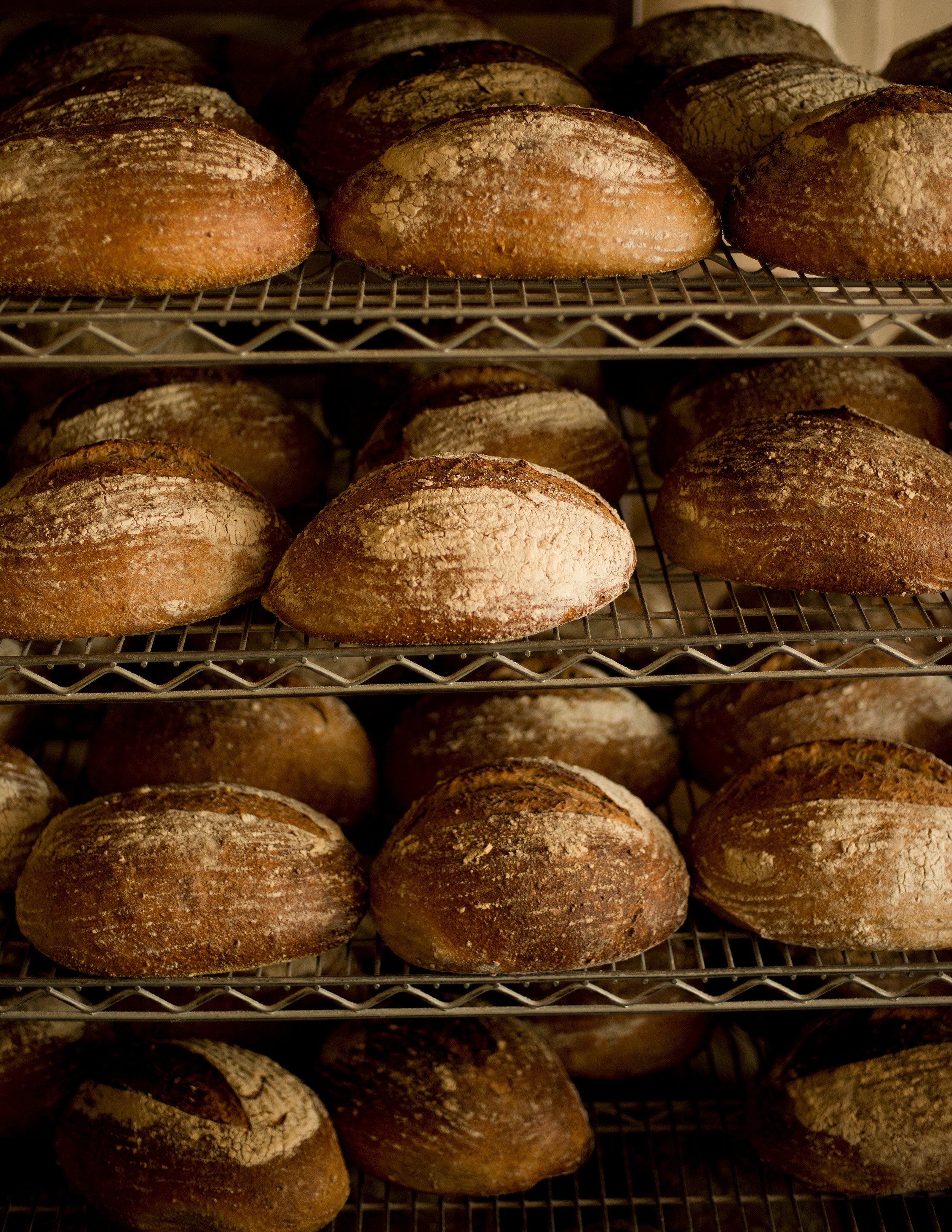 sage bakehouse bakery and cafe santa fe new mexico
