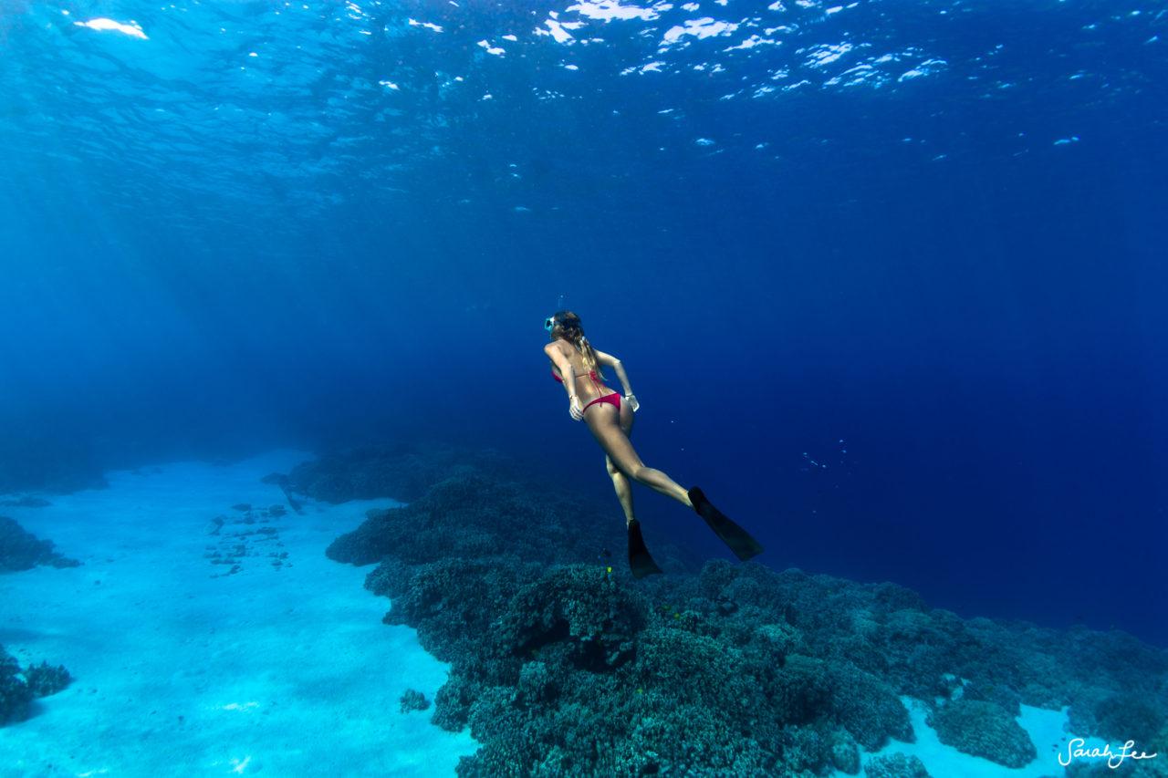 SarahLeePhoto_Underwater_Flash_Photography_Hawaii_2986-1280x853.jpg
