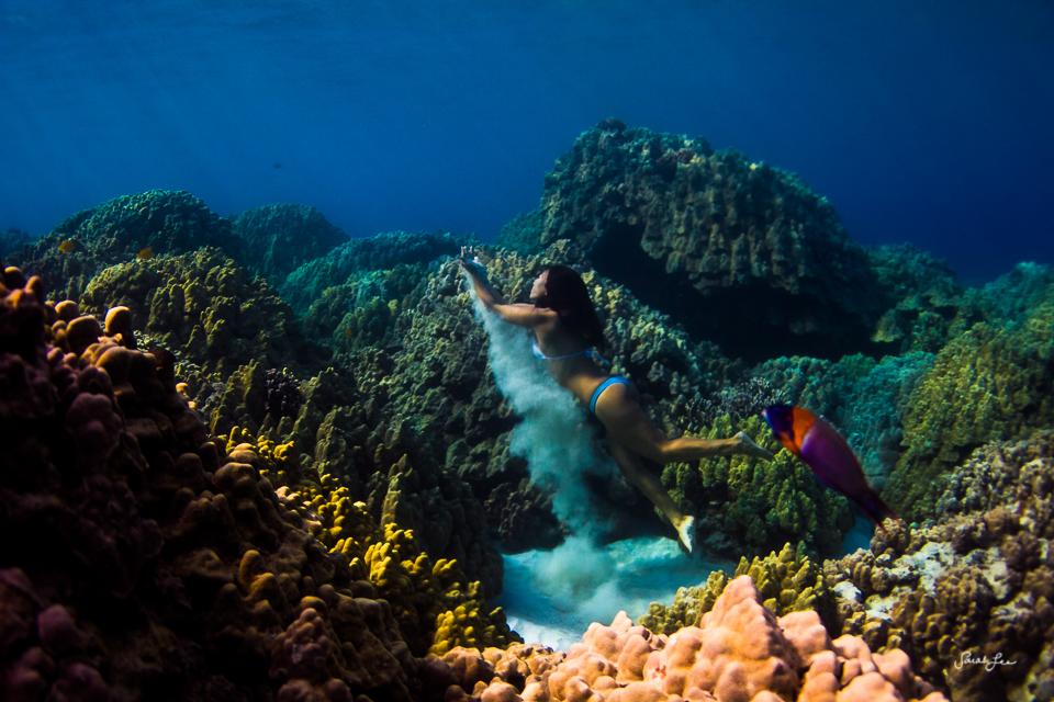 sarahleephoto_underwater_9145.jpg