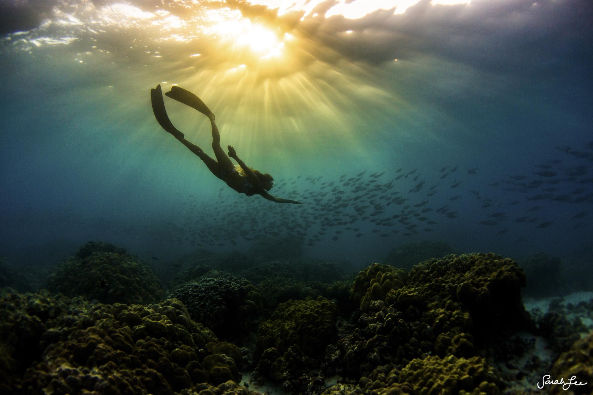 030_Sarah_Lee_Photography_Underwater_150207.jpg
