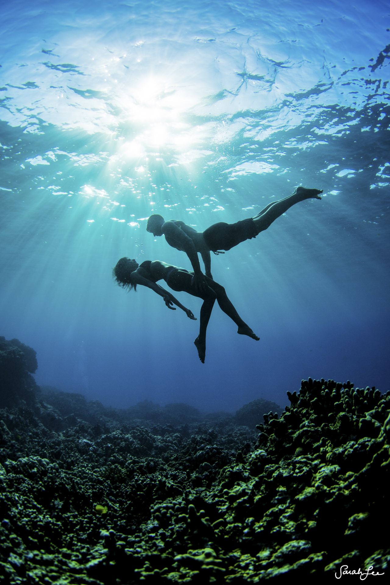 031_Sarah_Lee_Photography_Underwater_.jpg